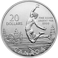 2014 Summertime $20 for $20 Silver Coin