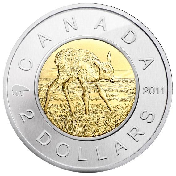 New 2011 2 Bi Metallic Special Ed Specimen Elk Calf Nclt