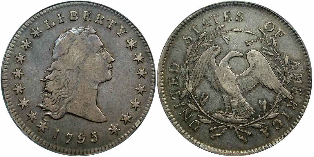 1795 Flowing Hair Dollar 2 Leaves Variety