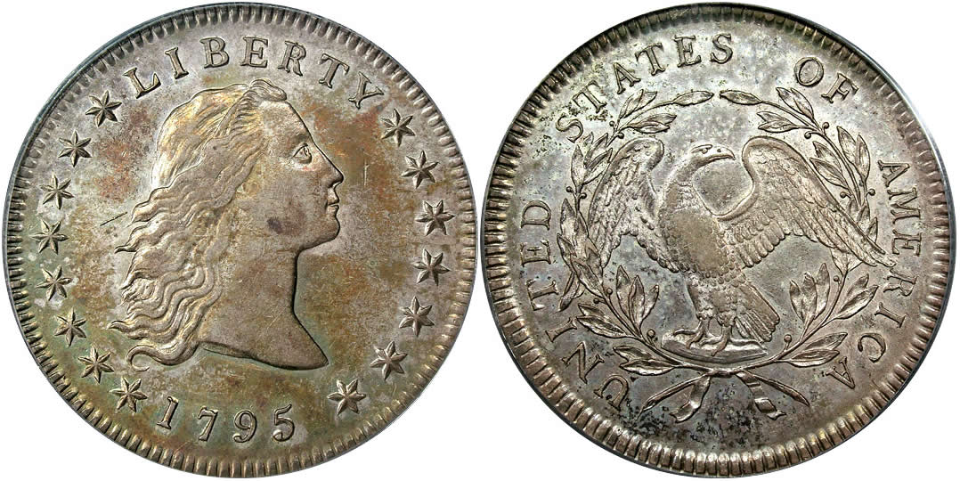 1795  Flowing Hair Dollar 3 Leaves Variety