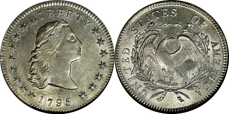 Flowing Hair Dollar 1795 Flowing Hair Dollar